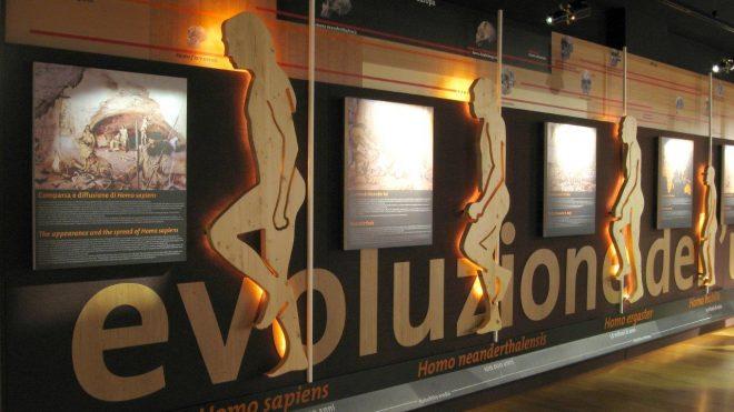 Museo sull'evoluzione dell'uomo.